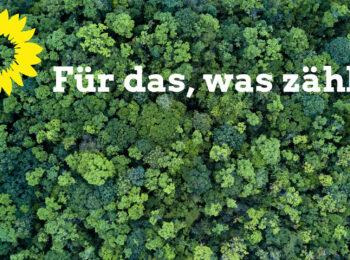 Auf einem Hintergrundbild mit grünen Bäumen ist eine gelbe Sonnenblume zu sehen und der Claim des Grünen Landesparteitages Für das, was zählt.