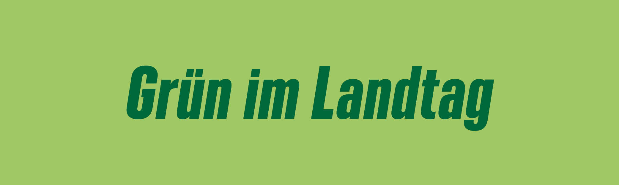 Grüne Landtagsfraktion